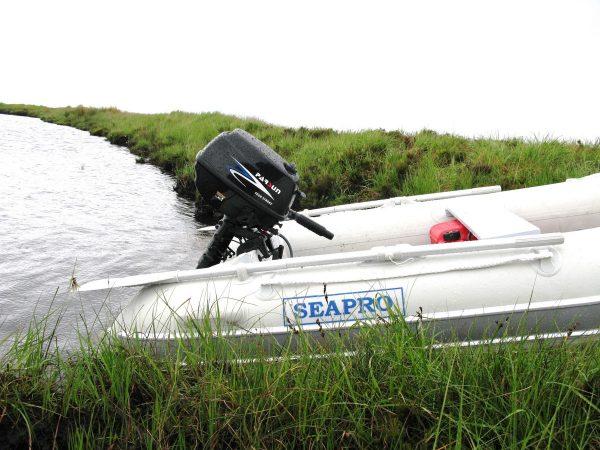 5hp Parsun 4 Stroke Outboard Motor 2